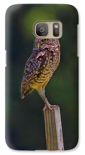 Galaxy Case featuring the photograph The Guardian by Anne Rodkin