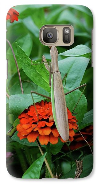 Galaxy Case featuring the photograph The Patience Of A Mantis by Thomas Woolworth