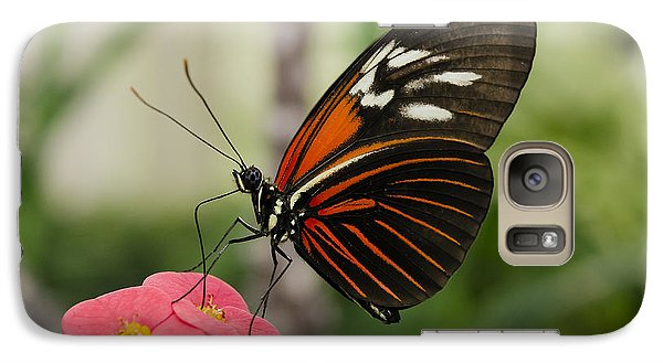 Galaxy Case featuring the photograph The Red Admiral  by MaryJane Armstrong