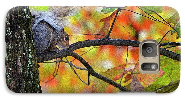 Galaxy Case featuring the photograph The Squirrel Umbrella by Paul Mashburn