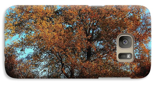 Galaxy Case featuring the photograph The Tree Of Life by Davandra Cribbie