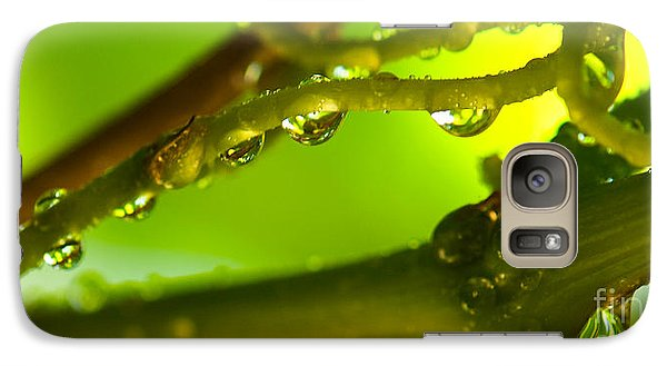 Galaxy Case featuring the photograph The Vineyard After The Rain by Artist and Photographer Laura Wrede