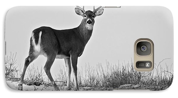 Galaxy Case featuring the photograph The Watching Deer by Nancy De Flon