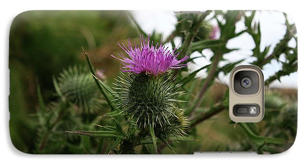 Galaxy Case featuring the photograph Thistle Bloom by Lorraine Devon Wilke