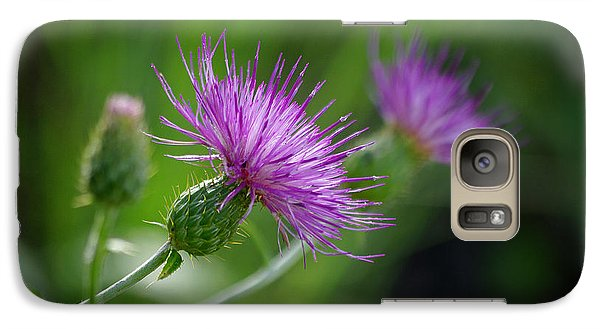 Galaxy Case featuring the photograph Thistle Dance by Vicki Pelham