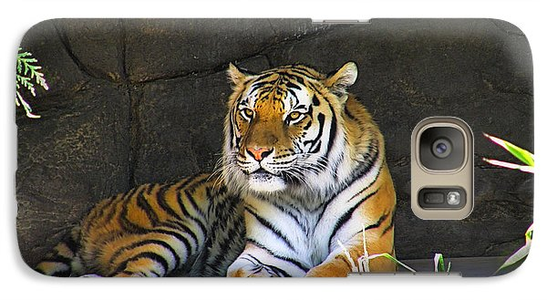 Galaxy Case featuring the photograph Tiger Life by Wendy McKennon