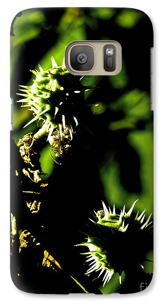 Galaxy Case featuring the photograph Touched By The Late Afternoon Sun by Steve Taylor