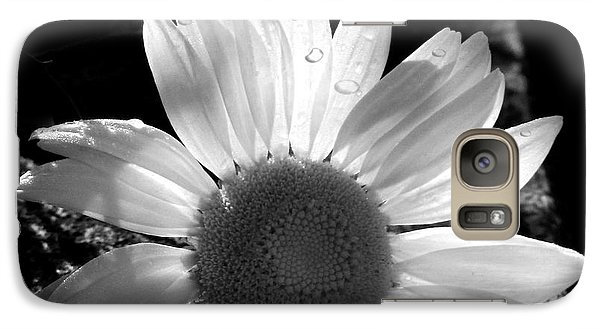 Galaxy Case featuring the photograph Translucent Daisy by Cindy Haggerty