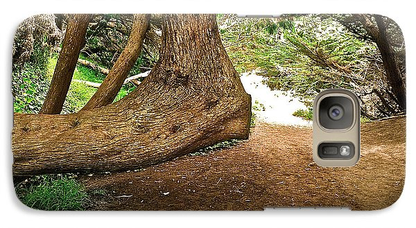 Galaxy Case featuring the photograph Tree And Trail by Bill Owen