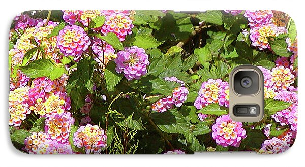 Galaxy Case featuring the photograph Tropical Lantana by Roena King