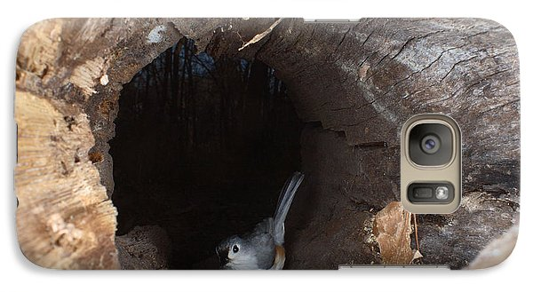 Tufted Titmouse In A Log Galaxy S7 Case