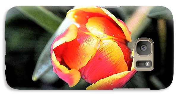 Galaxy Case featuring the photograph Tulip In Bloom by Pravine Chester
