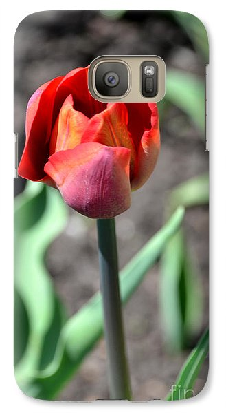 Galaxy Case featuring the photograph Tulip by Pravine Chester