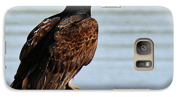 Galaxy Case featuring the photograph Turkey Vulture On Limb by Roena King