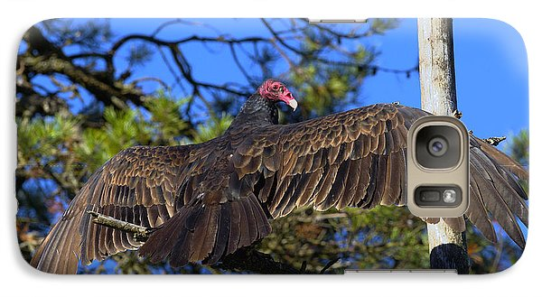 Turkey Vulture With Wings Spread Galaxy S7 Case