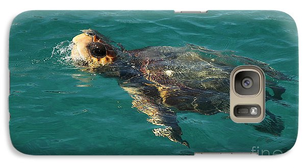 Galaxy Case featuring the photograph Turtle by Milena Boeva