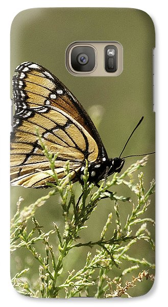 Galaxy Case featuring the photograph Viceroy Butterfly by Betty Depee