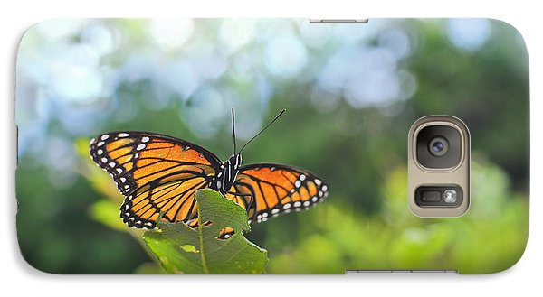 Galaxy Case featuring the photograph Viceroy Butterfly Limenitis Archippus  by Marianne Campolongo