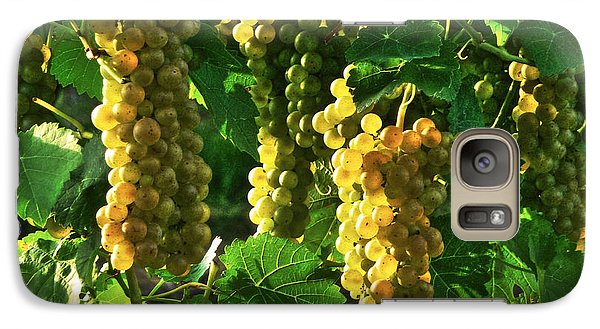Galaxy Case featuring the photograph Vignole Berries by William Fields