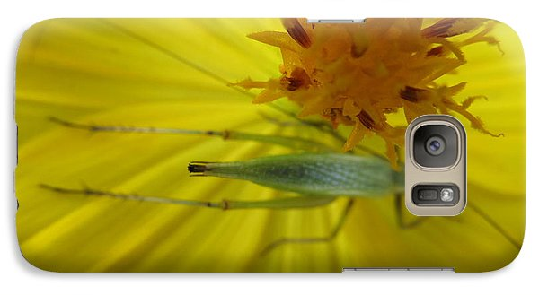 Galaxy Case featuring the photograph Visitor by Tina M Wenger