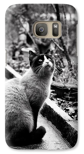 Galaxy Case featuring the photograph Waiting by Laura Melis