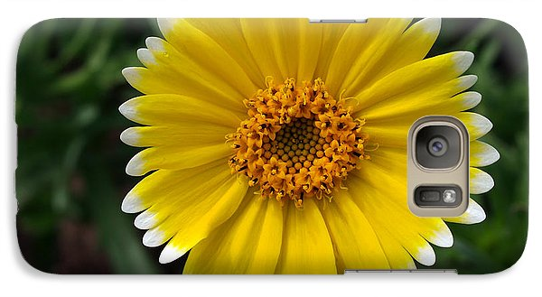 Galaxy Case featuring the photograph Wake Up by Joe Schofield