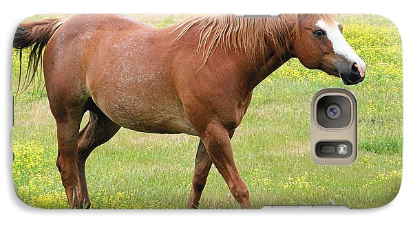 Galaxy Case featuring the photograph Walking Horse by Wendy McKennon