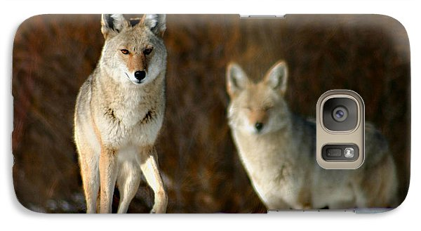 Galaxy Case featuring the photograph Watching by Mitch Shindelbower