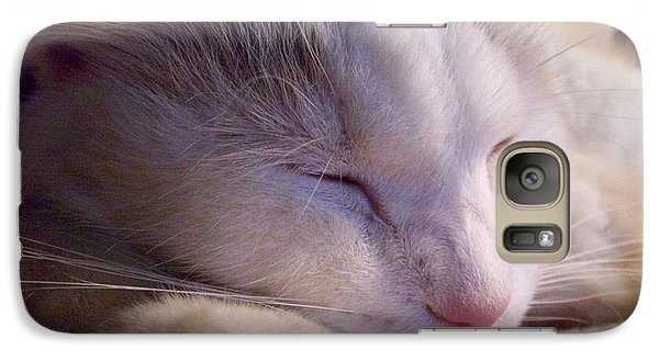 Galaxy Case featuring the photograph What Is A Cat by Ginny Schmidt