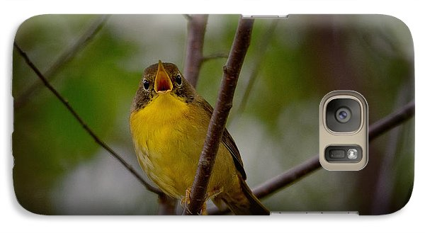 Warbler Galaxy S7 Case - What Warblers Do by Susan Capuano