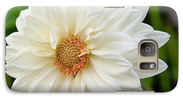 Galaxy Case featuring the photograph White Dahlia by Ann Murphy