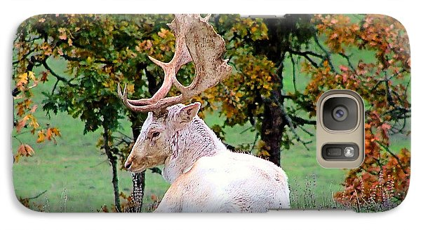 Galaxy Case featuring the photograph White Deer by Wendy McKennon