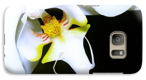 Galaxy Case featuring the photograph White Elegance by Judi Bagwell