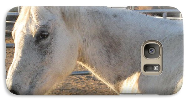 Galaxy Case featuring the photograph White Horse by Sue Halstenberg