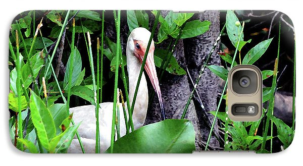 Galaxy Case featuring the photograph White Ibis At The Everglades by Pravine Chester
