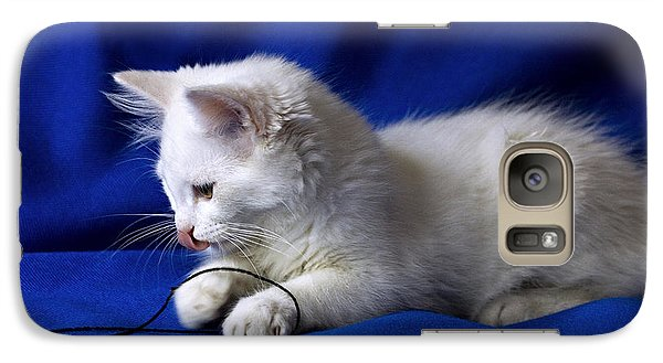 Galaxy Case featuring the photograph White Kitty On Blue by Raffaella Lunelli