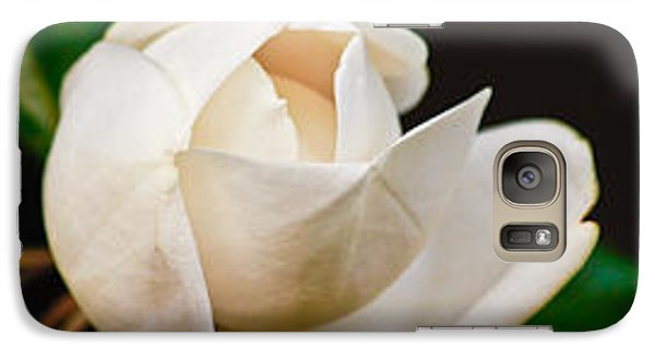 Galaxy Case featuring the photograph White Magnolia Unfolding by Ann Murphy