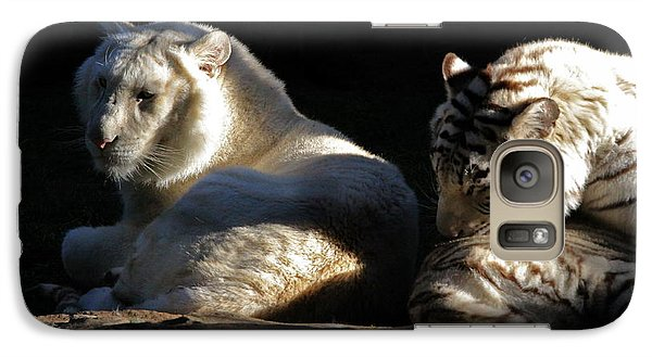 Galaxy Case featuring the photograph White Tiger And Lion by Kate Purdy