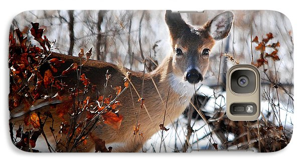Galaxy Case featuring the photograph Whitetail Deer In Snow by Nava Thompson