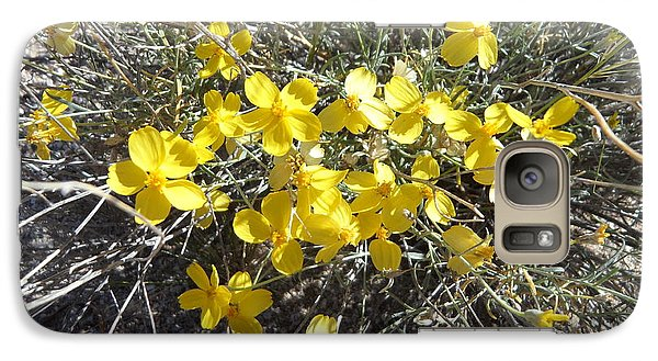 Galaxy Case featuring the photograph Wild Desert Flowers by Kume Bryant