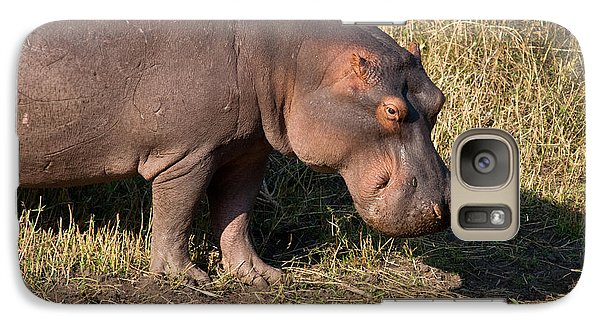 Galaxy Case featuring the photograph Wild Hippopotamus by Karen Lee Ensley