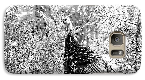 Galaxy Case featuring the photograph Wild Turkey In Black And White by Maciek Froncisz