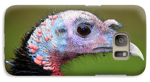 Galaxy Case featuring the photograph Wild Turkey by Patrick Witz