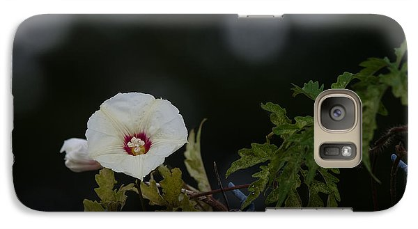 Galaxy Case featuring the photograph Wildflower On Fence by Ed Gleichman