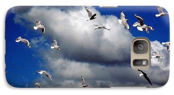 Galaxy Case featuring the photograph Wind Sailing Seagulls by Vicki Ferrari