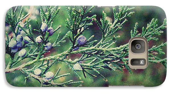 Galaxy Case featuring the photograph Winter Berries by Robin Dickinson