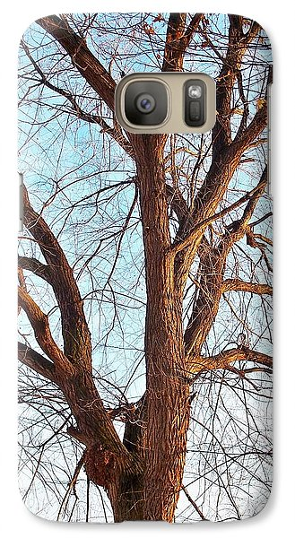 Galaxy Case featuring the photograph Winter Light by Chalet Roome-Rigdon