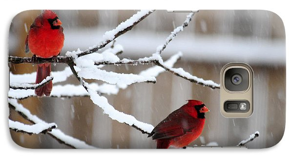 Galaxy Case featuring the photograph Christmas Tree Ornaments by Wanda Brandon