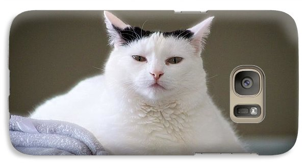 Galaxy Case featuring the photograph Wise Cat by JM Photography