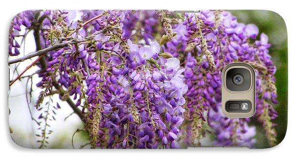 Galaxy Case featuring the photograph Wisteria by Joan Bertucci